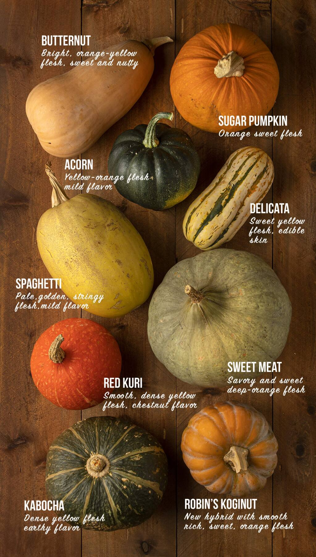 Winter squash varieties. (John Burgess/The Press Democrat