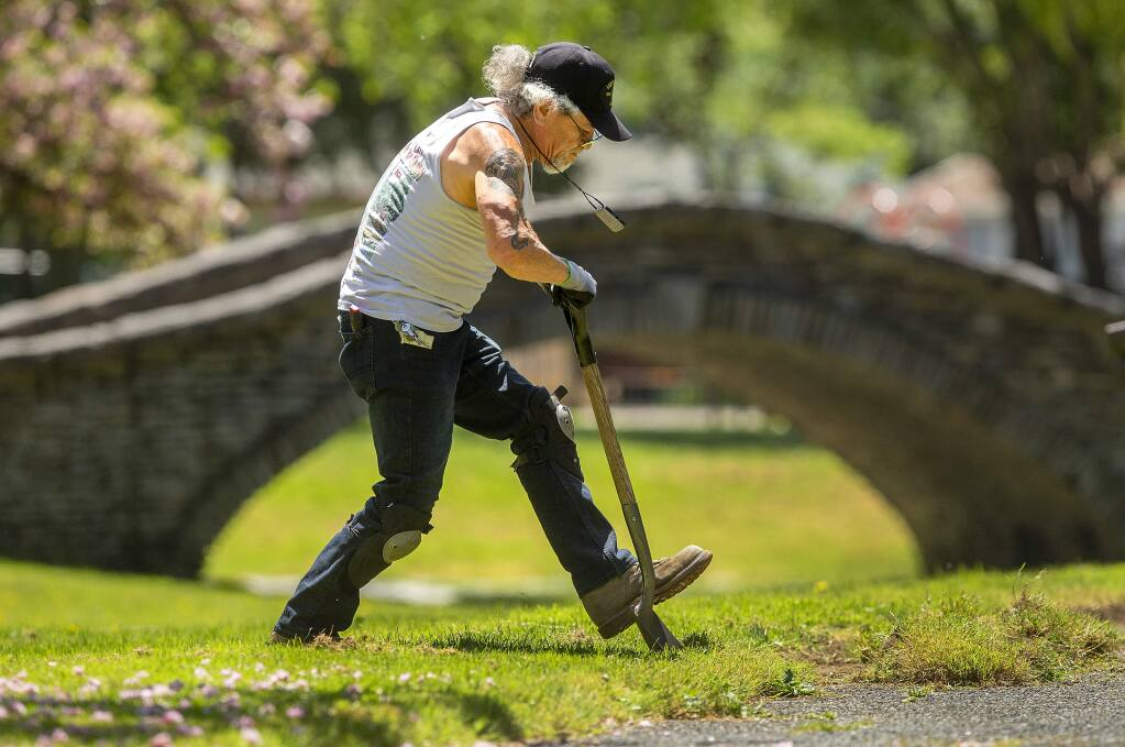 When Kennett Makaiwi noticed a brick-lined edge under the overgrown paths in Julliard Park in Santa Rosa, he volunteered for the grueling task of cutting back the grass. (JOHN BURGESS/ PD)