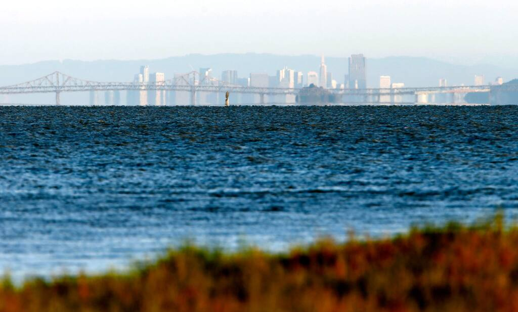The Richmond Bridge and skyline of San Francisco are visible from the Sears Point Wetlands Restoration Project near Sonoma. (ALVIN JORNADA / The Press Democrat, 2016)