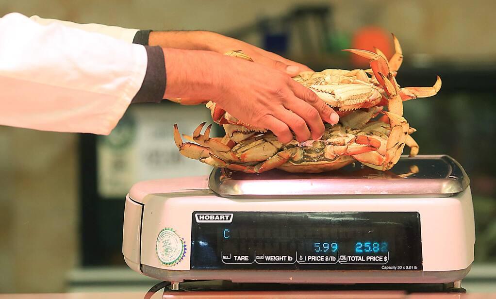 Fresh dungeness crab are weighed at Oliver's Market in Santa Rosa, Thursday Nov. 17, 2016. (Kent Porter / The Press Democrat) 2016