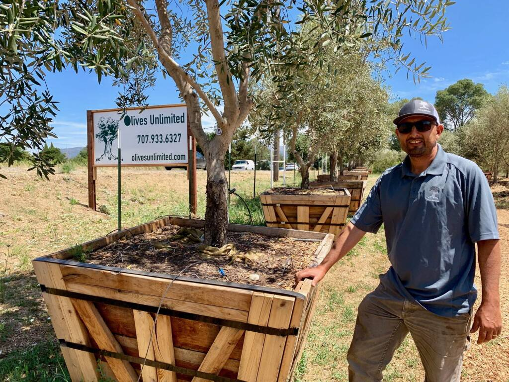 Jordan Ruis of Olives Unlimited may be familiar to some from his other business, Green Giant Landscape.