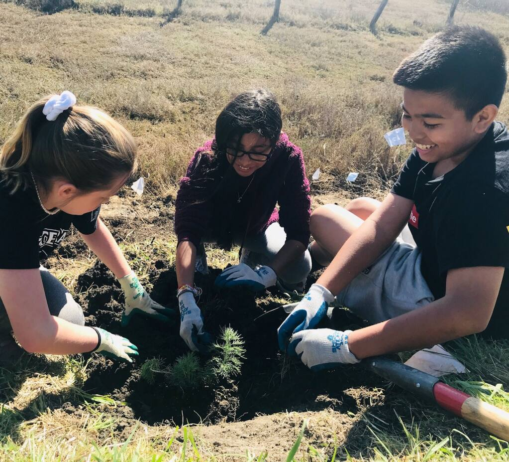 Students putting in plants at Shollenberger Park in February, 2020. (LISHKA ARATA)