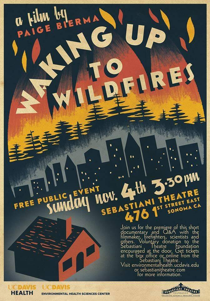 The fire film poster.