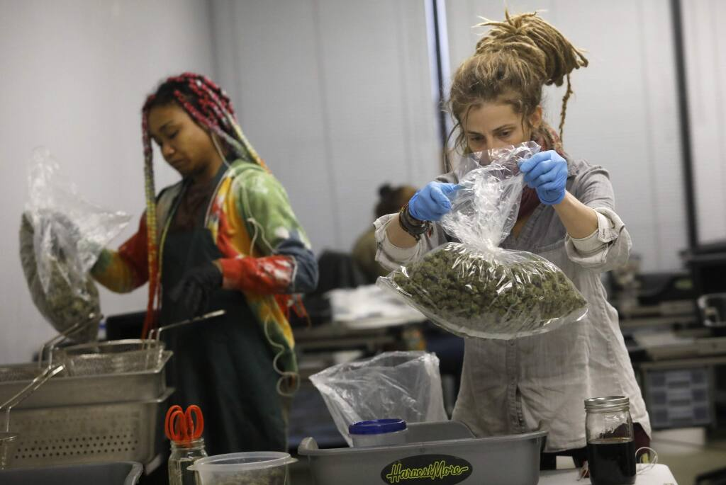 Employees Jessica Castiglione, right, and Annalisa Hopper bag buds of marijuana that have been trimmed at the Justice Grown cannabis warehouse on Tuesday, November 27, 2018 in Santa Rosa, California . (BETH SCHLANKER/The Press Democrat)