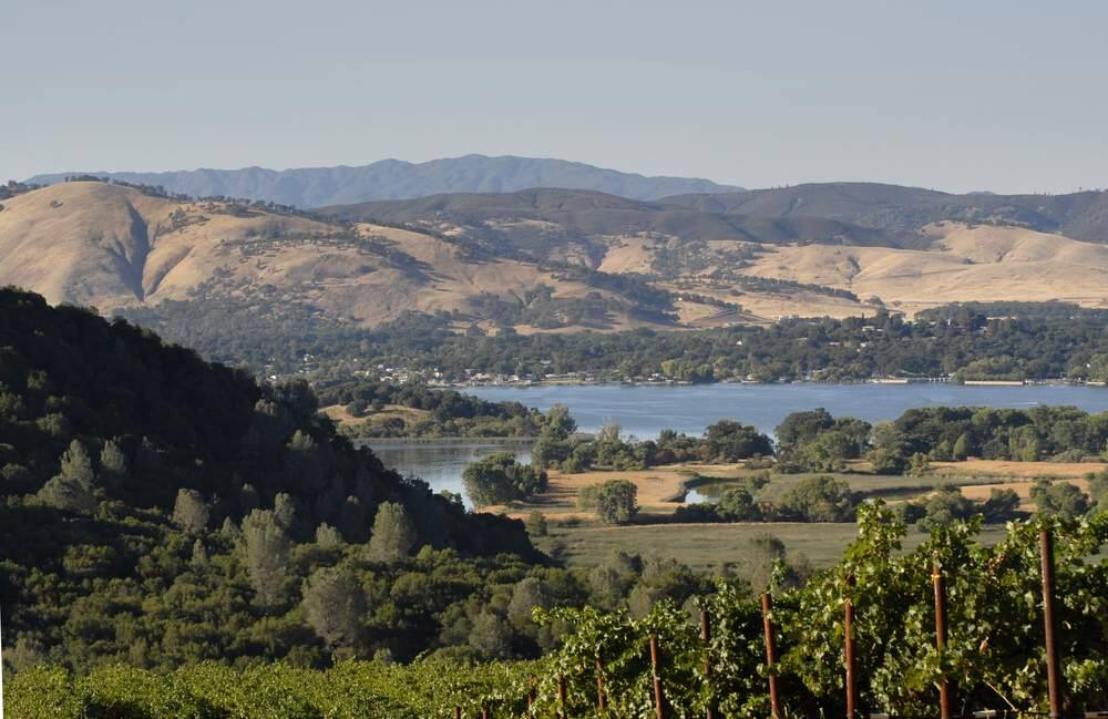 Vineyard above Clearlake in Lake County. (Terry W Ryder / Shutterstock)