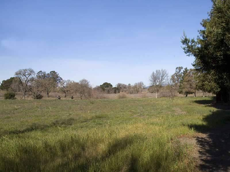 Land in west Petaluma where the proposed Sid Commons housing development is to be built.