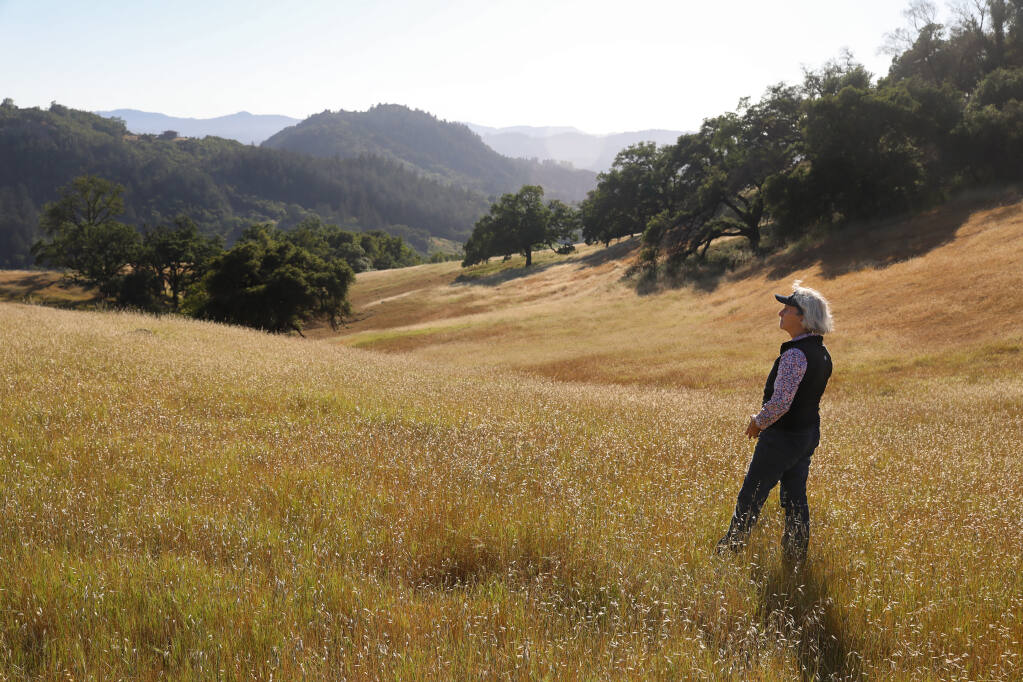 Christine Foppiano Haun looks out at the Walter and Jean Foppiano Ranch property owned by her and her sister, Ruth Ann Foppiano, near Healdsburg on Wednesday, May 12, 2021.  Sonoma Land Trust closed escrow on a conservation easement protecting the 758-acre property.  (Christopher Chung/ The Press Democrat)