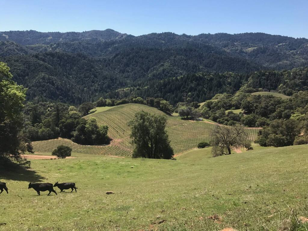 Gloeckner-Turner Ranch