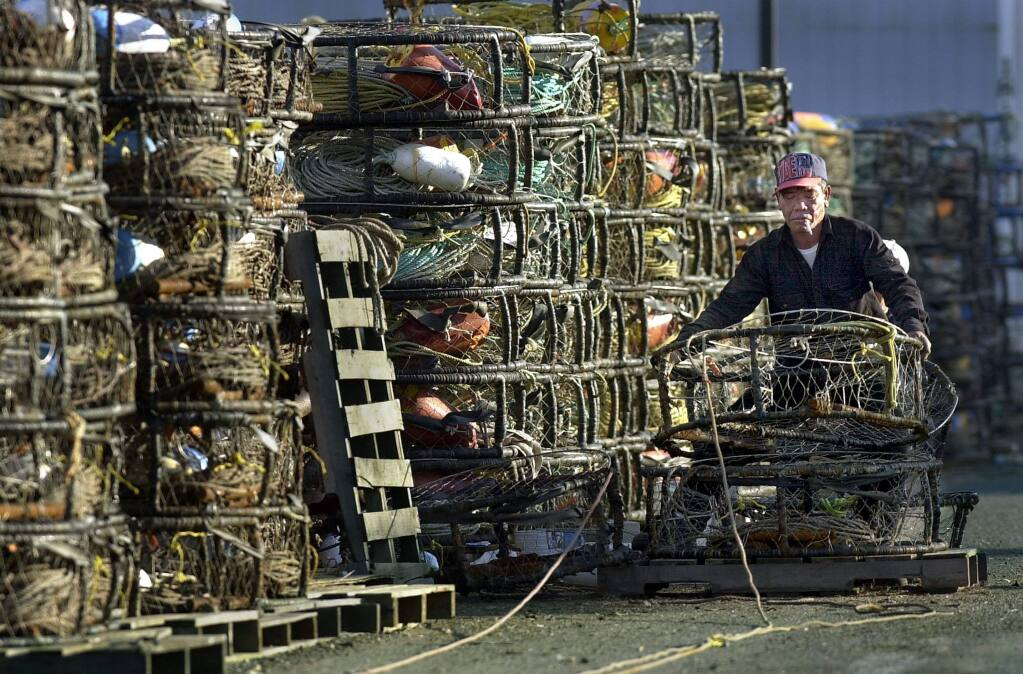 PC: Dan Nguyen of the A more A out of Bodega Bay readies crab pots Tuesday Dec. 3, 2001 near Spud Point Marina in preparation of strike delayed opening of crab season, that will begin 6 AM Wednesday Dec. 4, 2001.12/5/2001: B1-C: Dan Nguyen of the A more A out of Bodega Bay readies crab pots Tuesday near Spud Point Marina. Local Dungeness crab could be in the stores by Friday.
