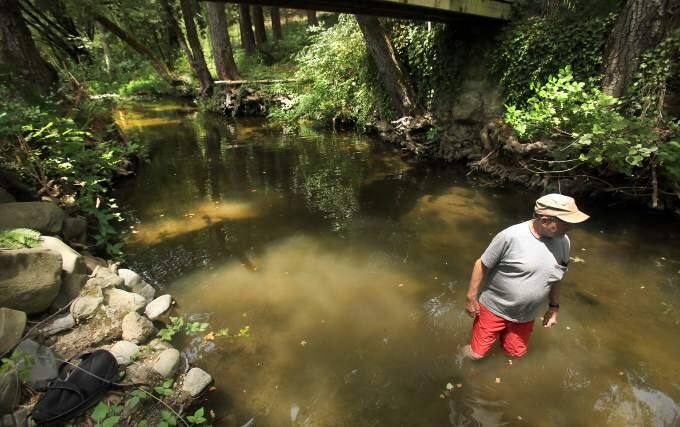 Grif Okie used to swim during summer months in Mark West Creek in this pool that was up to his armpits and in some places deeper, Wednesday July 1, 2015. (KENT PORTER/ PD FILE)