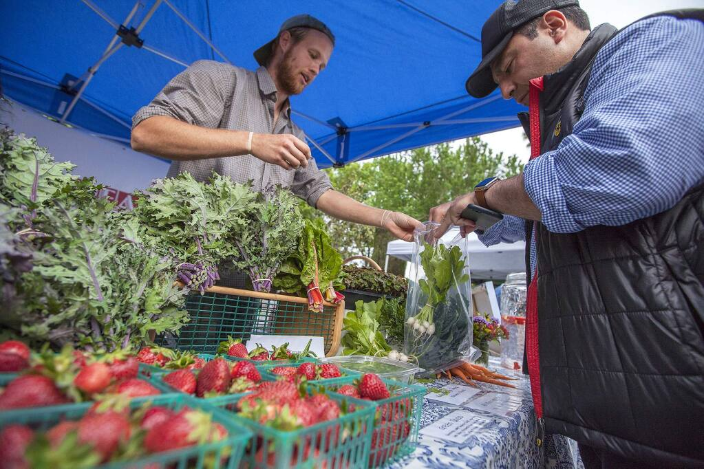 Edward Bodagh (right) purchased organic kale from Luke Carneal, who manned Sweetwater Spectrum's stand at Sonoma Plaza's Tuesday Farmers Market. (Robbi Pengelly/Index-Tribune)
