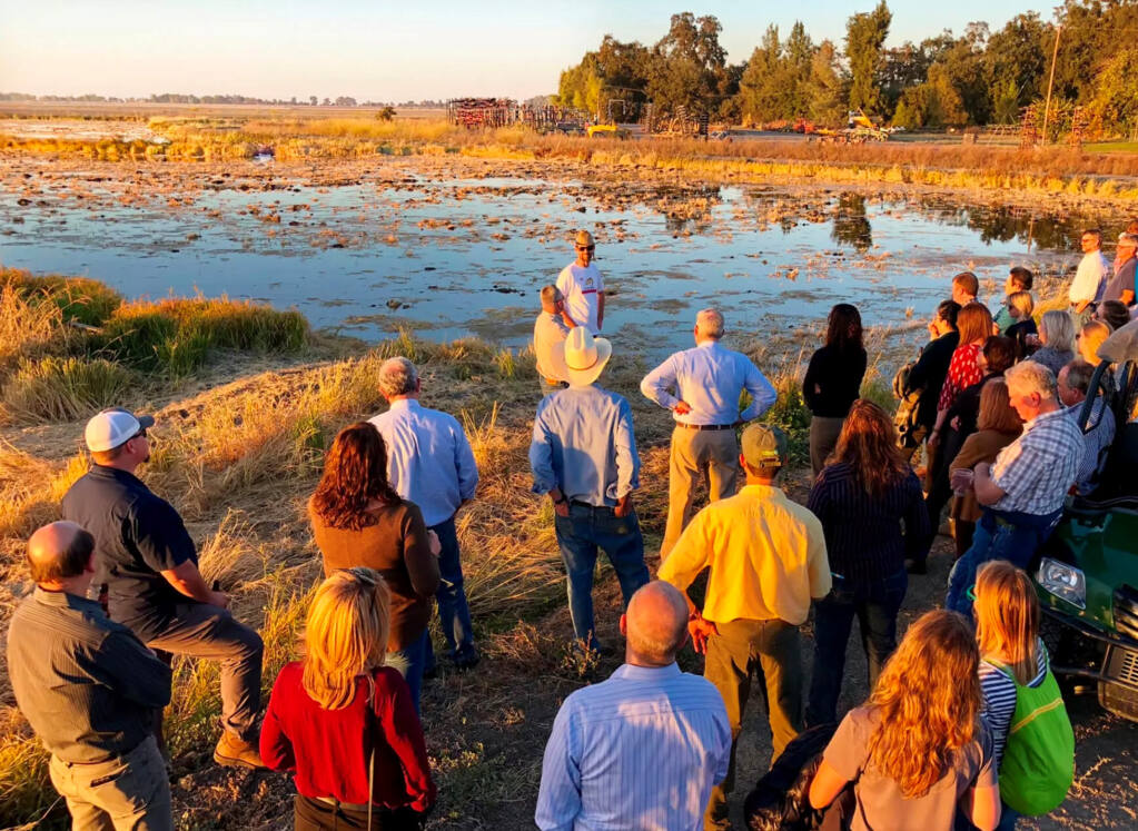 Rice fields in the Central Valley like this one, may soon be safe rearing areas for young salmon and steelhead, as the flooded plains the valley once where when the Sacramento and San Joaquin Rivers were home to the largest Chinook salmon runs in the world. (CalTrout photo)