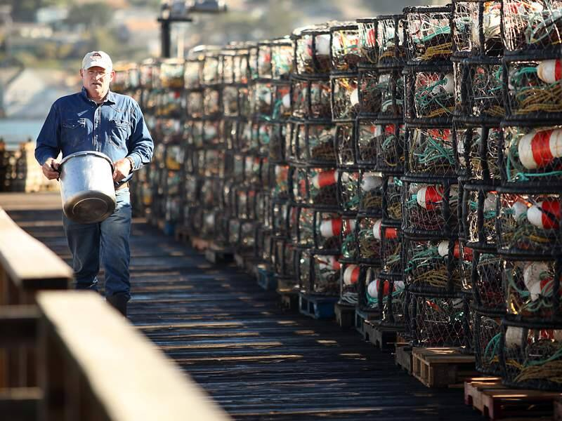 Sport fisherman Chuck Bartley, of Santa Rosa, walks past the commercial crab pots lined up along the dock at Paisano Brothers Fisheries in Bodega Bay on Wednesday, November 10, 2010.