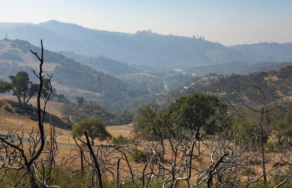 The view of the Mark West corridor looking southwest from Franz Valley Rd. on Saturday, September 4, 2020. Fire survivors hope county supervisors will use PG&E settlement funds to remove old dead trees and vegetation management.  (Photo by John Burgess/The Press Democrat)