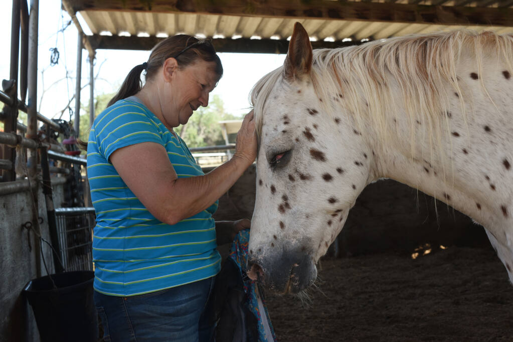"""""""They eat before I do,"""" said Betsy Bueno of Lost Hearts & Souls Horse Rescue. For 24 years, she has been rescuing animals like this leopard appaloosa named Buddy Love, pictured at her home in Santa Rosa on Thursday, July 1, 2021. Buddy lost his left eye from a bullwhip injury by an abusive owner in Mendocino County. (Erik Castro/for The Press Democrat)"""