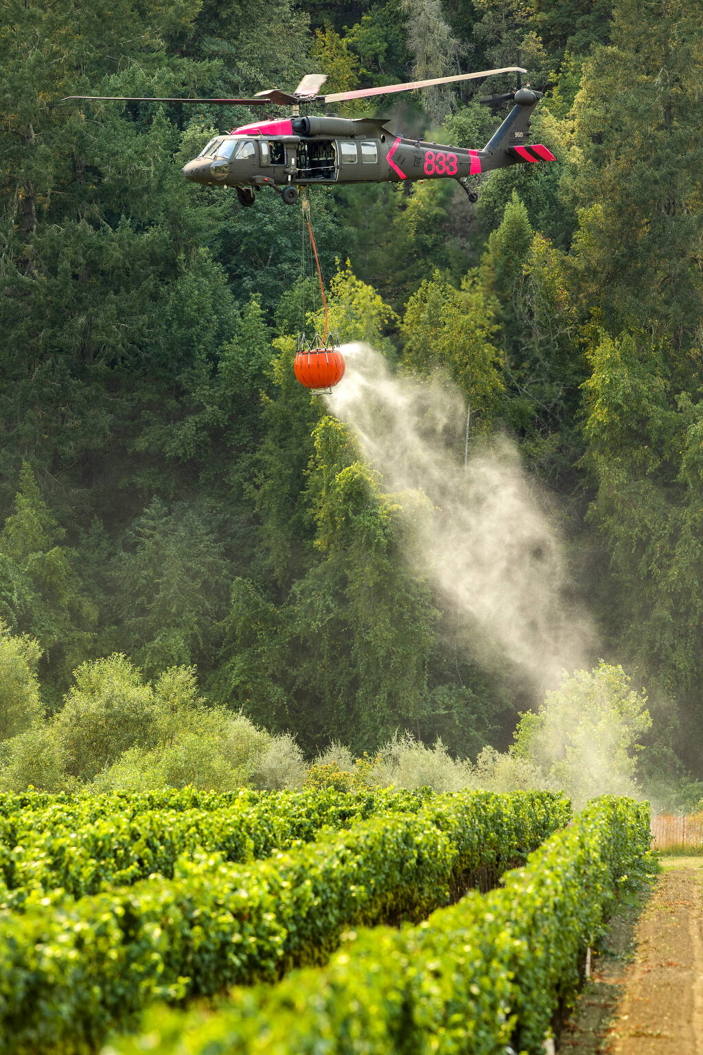 Three helicopters constantly refilled from the Russian River at the Korbel Winery as they battled the Walbridge fire in the hills to the north on Friday, August 21, 2020.  (Photo by John Burgess/The Press Democrat)