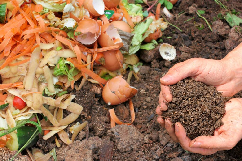 The essential foundation to a healthy garden is adding compost to your soil.