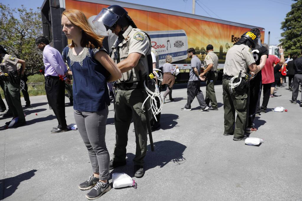 Protesters organized by the Direct Action Everywhere, an animal rights network, are arrested by Sonoma County Sheriff's deputies at a May 29 demonstration in Petaluma at Weber Family Farms. (BETH SCHLANKER/The Press Democrat)