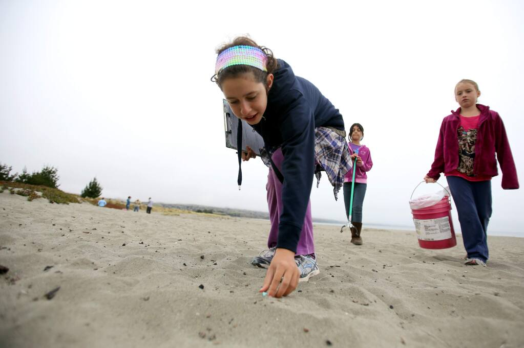 Sebastopol Independent Charter's Elah Shaw, 11, picks up a piece of plastic at Doran Beach in Bodega Bay picking up trash during the Coastal Cleanup Day in 2012. (PD FILE)