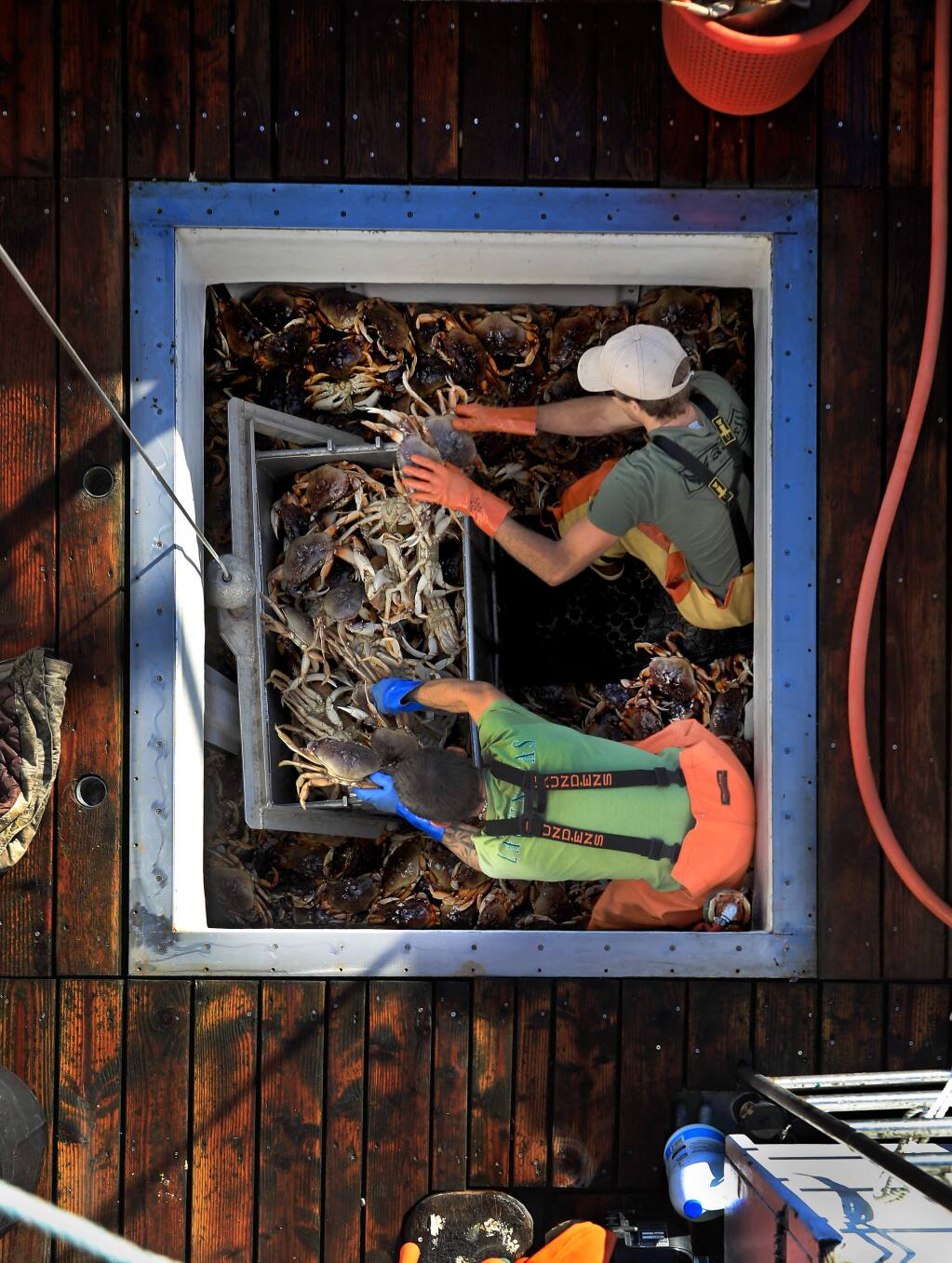 Tim Bentley, top, and Martin Blaney offload Dungeness crab from the hold of the Seastar at Spud Point Marina, Monday, Dec. 30, 2019 in Bodega Bay. (Kent Porter / The Press Democrat) 2019