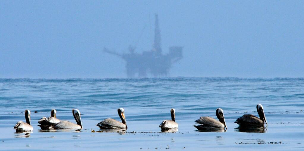 FILE - In this May 13, 2010 file photo, pelicans float on the water with an offshore oil platform in the background in the Santa Barbara Channel off the coast of Santa Barbara, Calif. Oil and gas companies drilling off the coast of Southern California violated state regulations nearly 400 times in the past three years, according to a report by an environmental group. (AP Photo/Mark J. Terrill, File)