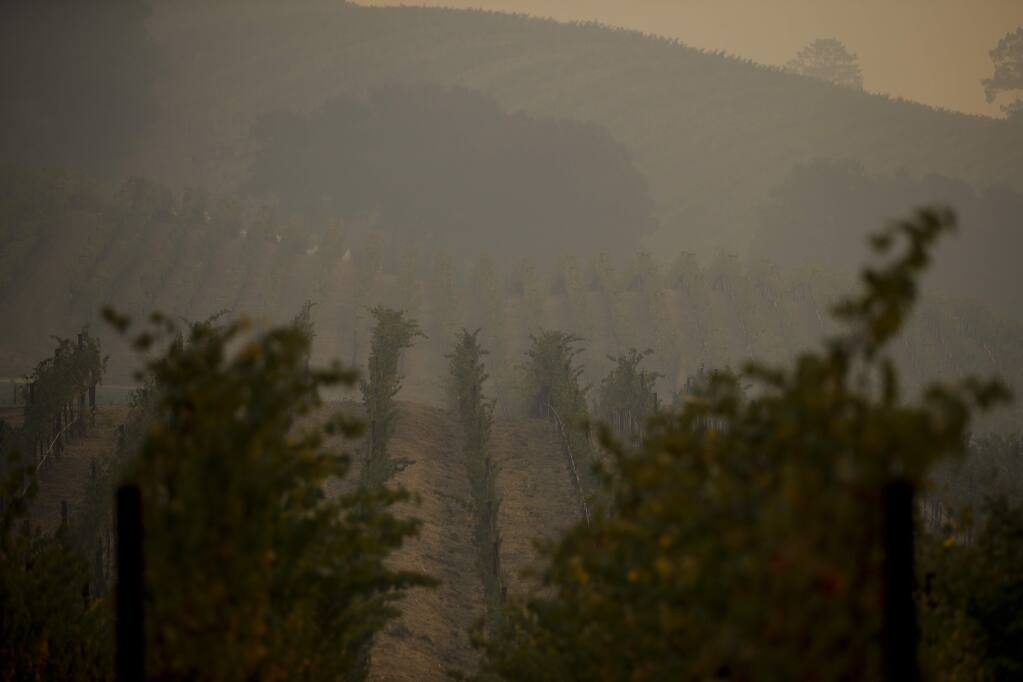 Smoke generated by wildfires fills the air in a vineyard Thursday, Oct. 12, 2017, near Napa, Calif. Gusting winds and dry air forecast for Thursday could drive the next wave of devastating wildfires that are already well on their way to becoming the deadliest and most destructive in California history. (AP Photo/Jae C. Hong)