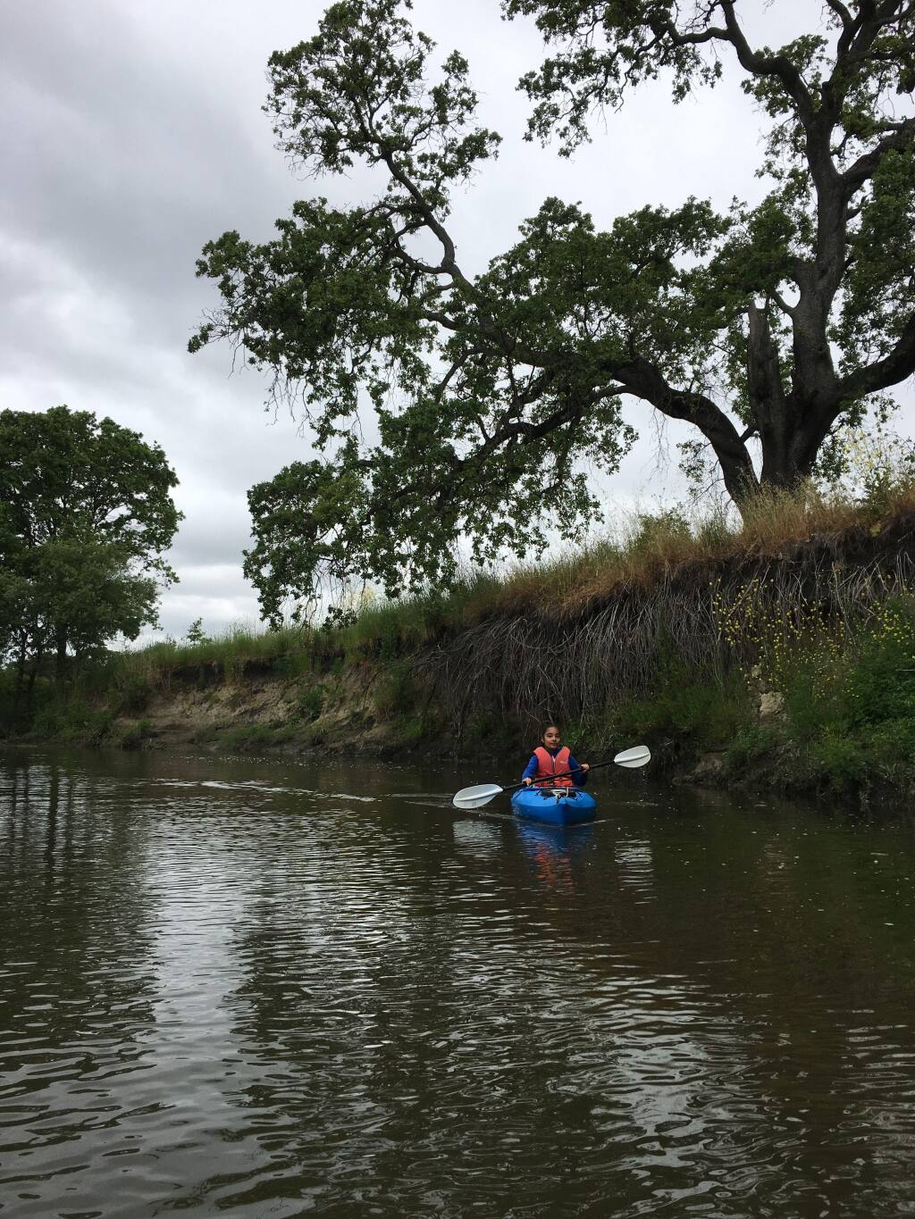A kayaker enjoys a moment of solitude on the Petaluma River near the area proposed for the Sid Commons Housing Development.