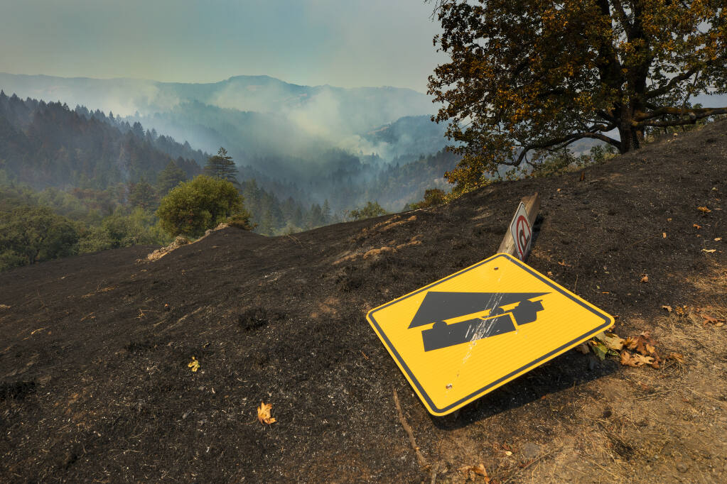 The view west from Armstrong Woods Road above Armstrong Redwoods State Natural Reserve near Bullfrog Pond Campground after the Walbridge fire burned through the area on Friday, Aug. 21, 2020.  (John Burgess/The Press Democrat)
