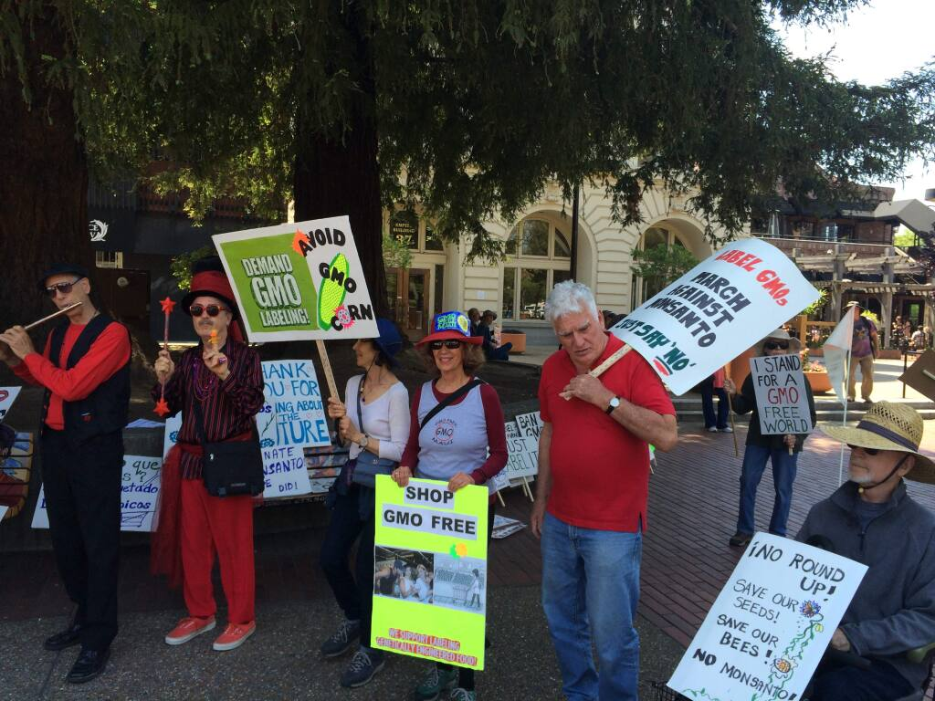 More than 150 people protested agricultural biotechology giant Monsanto on Saturday, May 23, 2015, in downtown Santa Rosa. (Photo by Clark Mason / The Press Democrat)