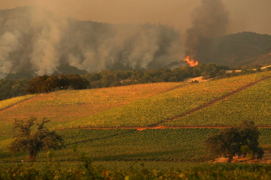 Flames from the Southern Complex fire descend a hillside above Kenwood, California, with the vineyards of Kunde Family Winery in the foreground, on Tuesday evening, October 10, 2017. (Alvin Jornada / The Press Democrat)