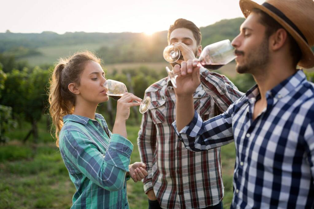 The annual Experience Alexander Valley weekend will provide a deep dive into the region's terroir on June 22 and 23 with events such as blending seminars with winemakers and bocce in the vineyards. (alexandervalley.org)