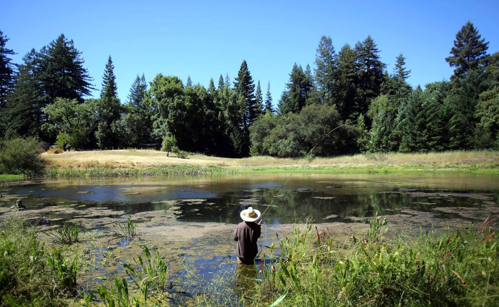 Jay Sliwa of Bodega fly fishes at Bullfrog Pond in Austin Creek State Recreation Area in 2012. (CRISTA JEREMIASON / PRESS DEMOCRAT FILE)