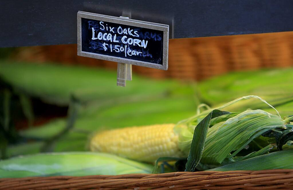 Corn from Six Oaks Farm in Geyserville is an example of locally grown corn. (Kent Porter / The Press Democrat, 2013)