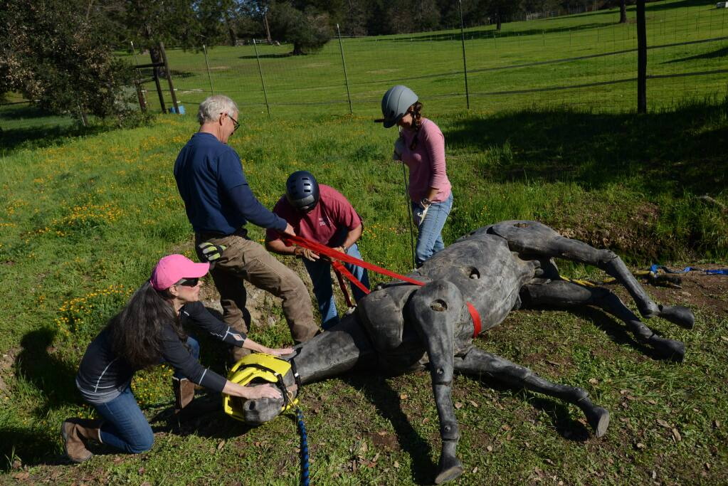 From left, Julie Atwood, Certified Wildlife Protector Conny Gustafsson, Mike Nevis with Yolo County Sheriff's Office and veterinarian Dr. Amber Johnson of Artaurus Veterinary Clinic during a horse rescue training session held at Atwood Ranch in Glen Ellen Sunday afternoon. February 21, 2016. (Photo: Erik Castro/for The Press Democrat)