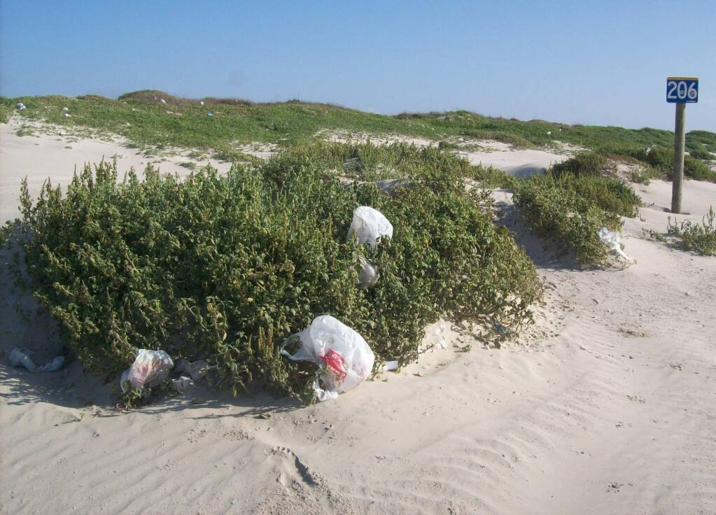 Propositions 65 and 67 are sponsored by bag manufacturers opposed to California's ban on disposable plastic shopping bags. (Surfrider Foundation)