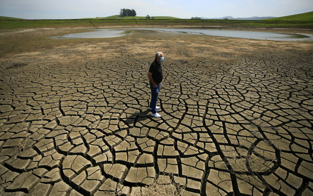 As Sonoma County and California continue to sink deeper in to drought, Don DeBernardi's irrigation ponds are at critical levels.  He relies on a trio of ponds to provide water for his dairy herd in the Two Rock Valley west of Petaluma, Friday, April 2, 2021.  (Kent Porter / The Press Democrat) 2021