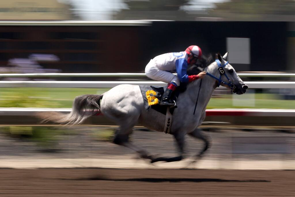 Hugo Herrera races Es Mi Cielo across the finish line in front of the pack to take first place during the first day of horse racing at the Sonoma County Fair in Santa Rosa, Thursday, July 30, 2015. (CRISTA JEREMIASON / The Press Democrat)