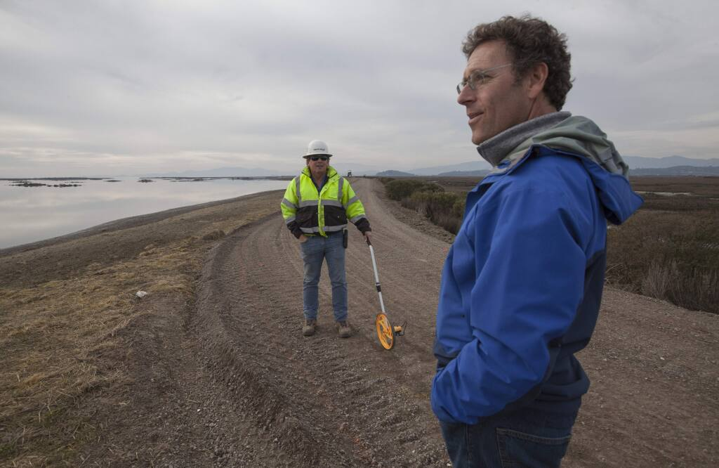 In October, the Sonoma Land Trust breached the levee holding back water from the bay. Now, the tidal basin has been restored, and running alongside it will be a 2.5-mile addition to the San Francisco Bay Trail.