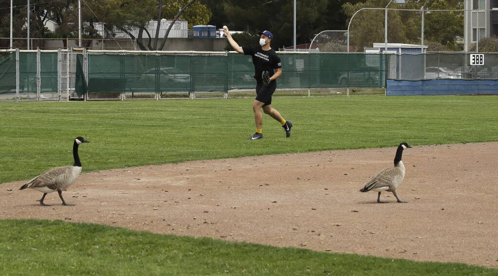 In this photo taken on Friday, April 17, 2020, Milwaukee Brewers minor league player Andre Nnebe throws as Canadian geese take the infield during an informal workout at Willie Stargell Field in Alameda. (AP Photo/Ben Margot)