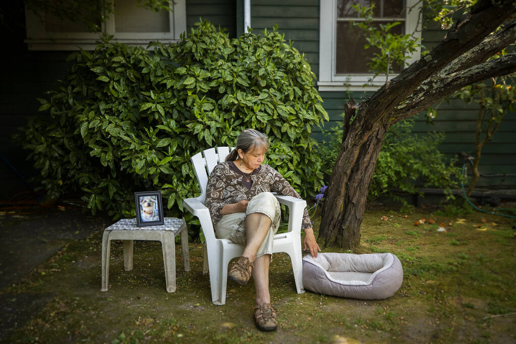 Susan Standen sits in the backyard of her Santa Rosa home with a photo and the bed of her dog, Baby Ruth, who was attacked and killed by a pit bull while on a walk last February.  Authorities have seized the dog from the owner and are seeking a vicious dog designation.  (John Burgess/The Press Democrat)