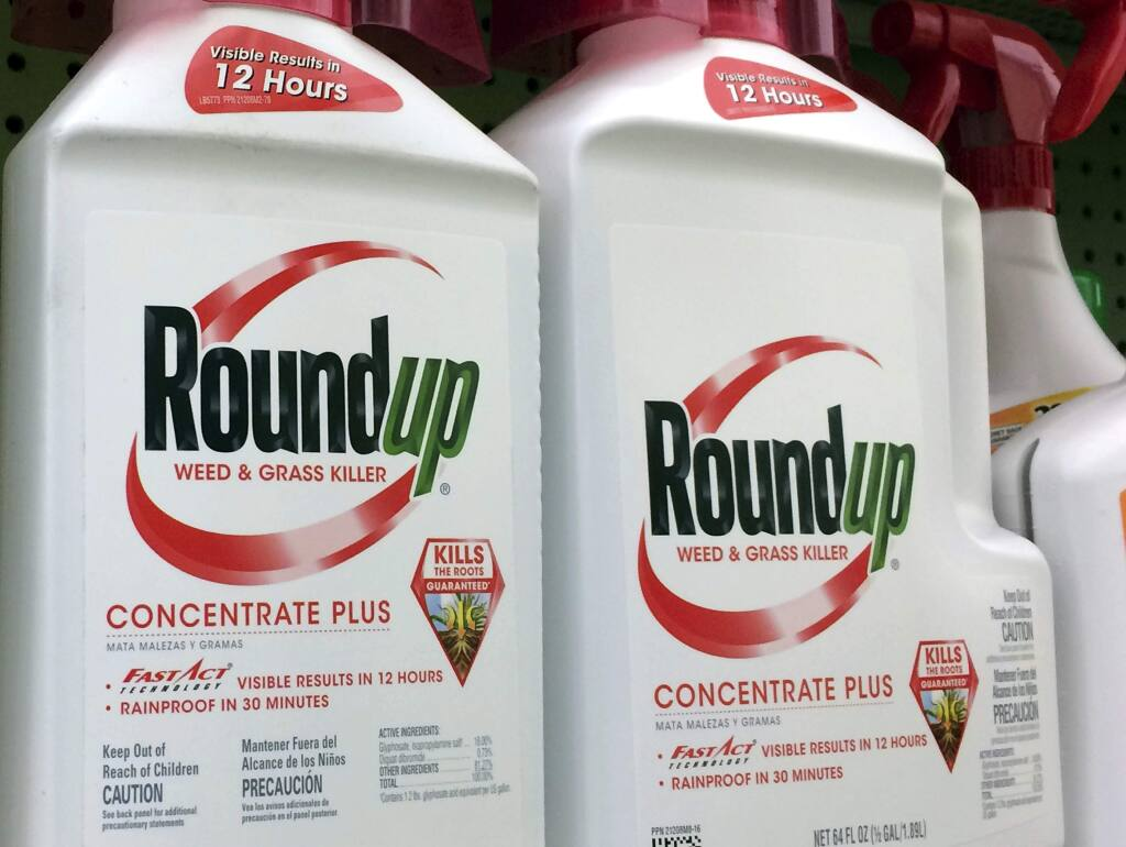 FILE - This Jan. 26, 2017 file photo shows containers of Roundup, a weed killer made by Monsanto, on a shelf at a hardware store in Los Angeles. A San Francisco jury's $289 million verdict in favor of a school groundskeeper who says Roundup weed killer caused his cancer will face its first court test. Agribusiness giant Monsanto will argue at a hearing on Wednesday, Oct. 10, 2018 that Judge Suzanne Bolanos should throw out the verdict in favor of DeWayne Johnson. (AP Photo/Reed Saxon, File)