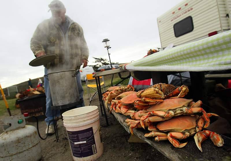 Fred Stewart, of Woodland cooks up crab while camping at the Doran Beach campground. Stewart and his family have been camping and crab fishing the past 34 Thanksgiving weekends.