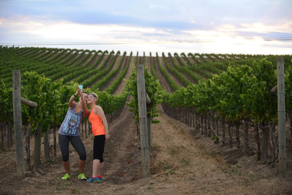 Those who visit Sonoma County and its surrounding areas tend to have a few common things they say or do while they're here. Click through the gallery to see if you recognize these familiar tourist traits. Here, tourists are known to stop or slow way down to take pictures of every vineyard they pass. (Photo: Erik Castro/for The Press Democrat)