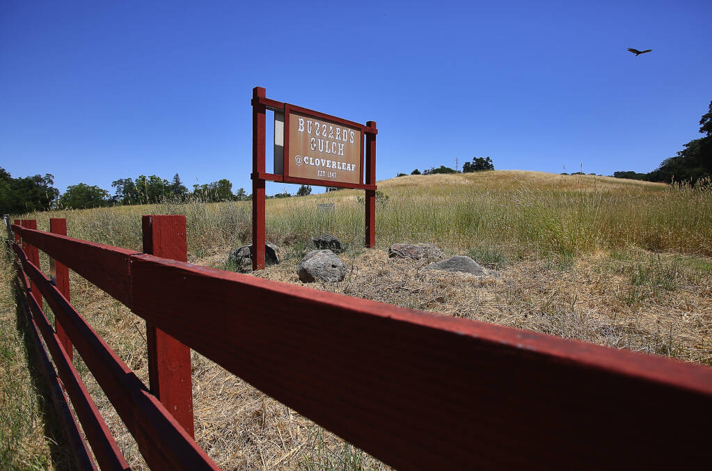 The view of the old Buzzard's Gulch property from Old Redwood Highway in Santa Rosa. (CHRISTOPHER CHUNG / The Press Democrat, 2017)