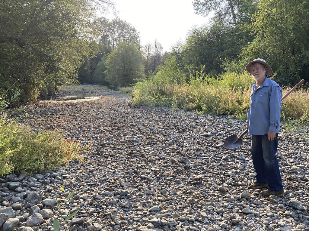 Jack Dwyer stands on the dry creek bed of Deer Creek in Selma, Ore. on Thursday, Sept. 2, 2021. In 1972, Dwyer pursued a dream of getting back to the land by moving to an idyllic, tree-studded parcel in Oregon with Deer Creek running through it. . But now, Deer Creek has become a dry creek bed after several illegal marijuana grows cropped up in the neighborhood last spring, stealing water from both the stream and aquifers and throwing Dwyer's future in doubt. (Carol Valentine via AP)