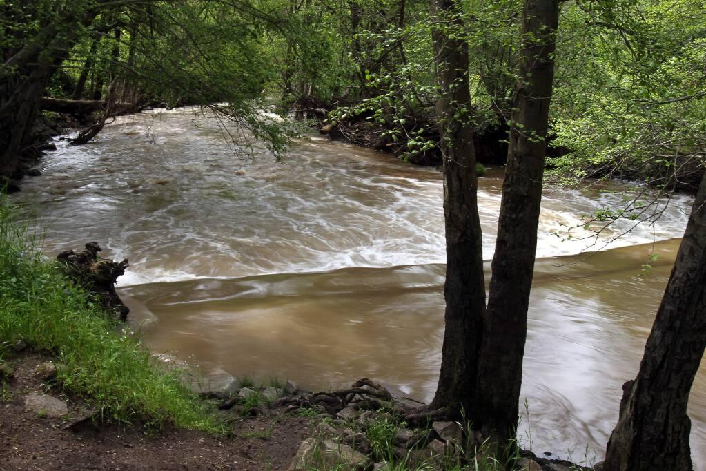 Sonoma Creek (PD FILE, 2012)