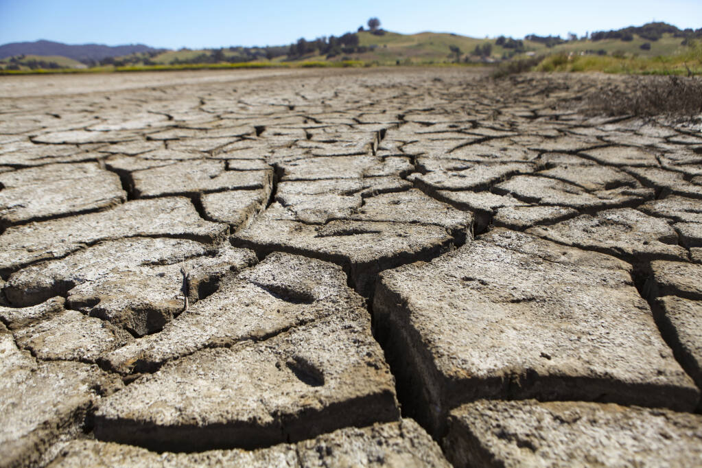 Cracks in the exposed ground at Petaluma's Shollenberger Park offer a stark reminder of the ongoing Sonoma County drought, which Gov. Gavin Newsom officially signalled two weeks ago. Petaluma residents are being asked to cut back on water usage by 20% ahead of likely mandatory cuts to come. (CRISSY PASCUAL/ARGUS-COURIER STAFF)
