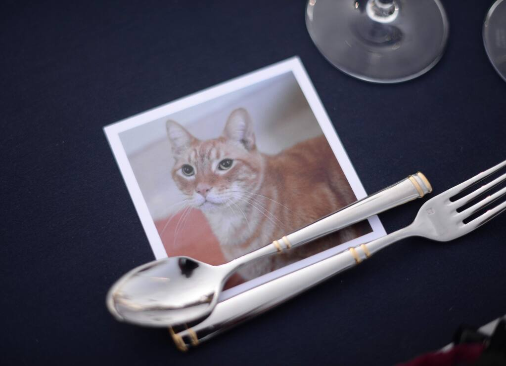 Each table setting greets the guest with a pet portrait at Wags, Whiskers & Wine Gala held Friday at Trentadue Winery in Geyserville, California. All proceeds benefit Human Society of Sonoma County. August 10, 2018.(Photo: Erik Castro/for The Press Democrat)