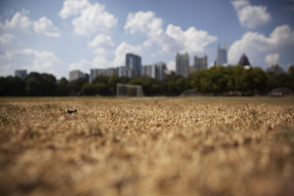 FILE - In this Oct. 3, 2019 file photo, dry grass from a lack of rain lays beneath the Midtown skyline in Atlanta. The chair of the two-week COP25 climate summit attended by nearly 200 countries warned at its opening Monday Dec. 2, 2019 that those refusing to adjust to the planet's rising temperatures 'will be on the wrong side of history.' (AP Photo/David Goldman, File)