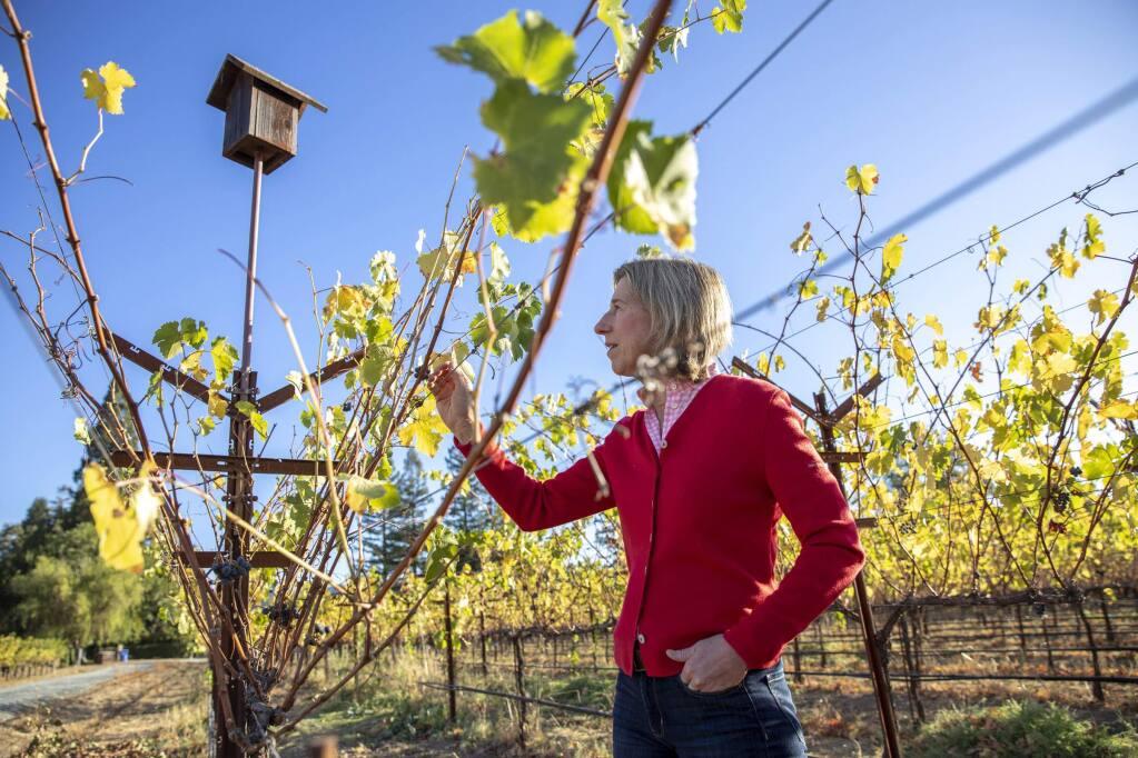 Beth Novak Milliken of Spottswoode Estate Vineyard & Winery in St. Helena. (PETER DaSILVA / New York Times)